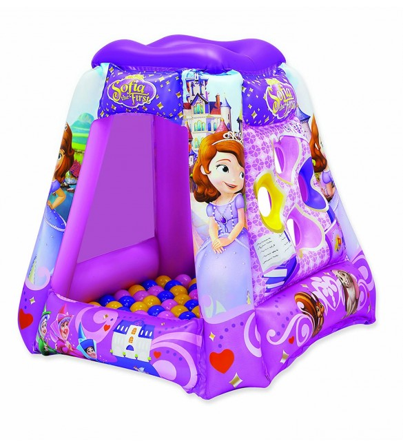 Disney Sofia The First Princess in Training Playland with 20 Balls