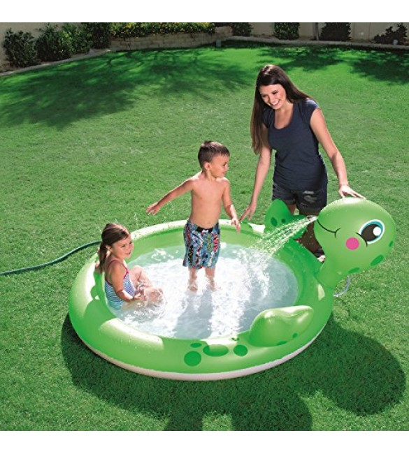 Interactive Turtle Play Pool