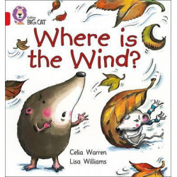 Collins: big cat: where is the wind