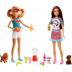 Barbie Sisters Assortment - 2 Types