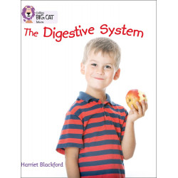 Collins : The Digestive System
