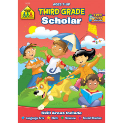 School Zone -Third Grade Scholar Workbook Ages 7 and Up