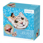 Intex Cat Face Island