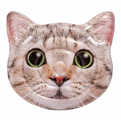 Intex Cat Face Island