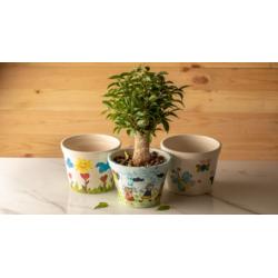 Hope Shop By KHCF - Plant Pot