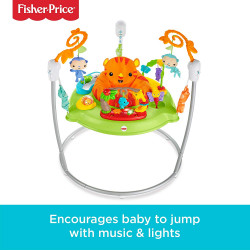 Fisher-Price Roaring Rainforest Jumperoo, New-Born Baby Activity Centre with Music and Lights