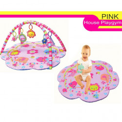 Fundays The Pinky House Musical Playgym