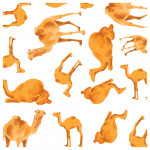 PureBorn - Organic Nappy for New Born, Camel Print, 0-4 Kg, 34 Nappies