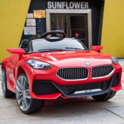 Motor Car Original BMW Z4 White / Red / Orange