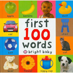 First 100 Words (Bright Baby First 100) Board book,14 pages