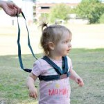 Safety 1st harness