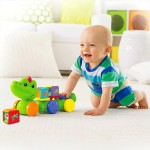 Fisher-Price Crawl Around Croce