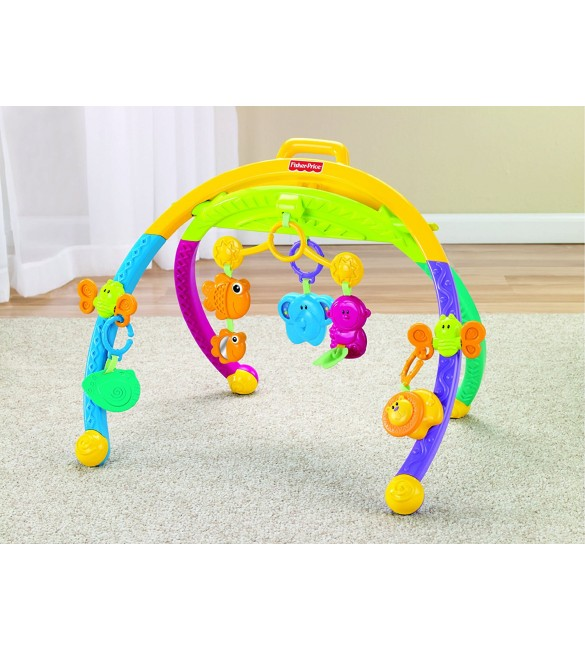 Fisher Price Growing Baby Animal Activity Gym
