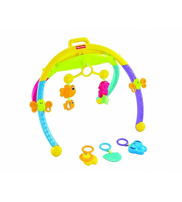 Fisher-Price Growing Baby Animal Activity Gym
