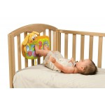 Chicco Sleep And Play Musical Puppy Crib